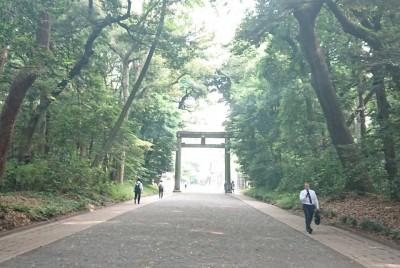 都心のお散歩スポット ~明治神宮~